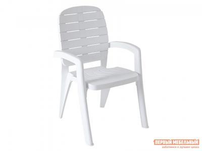 Пластиковый стул  Прованс Белый, пластик Элластик Пласт. Цвет: белый